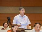 Để Liên Kết Việt lừa 60.000 dân, chính quyền quá yếu và tắc trách!