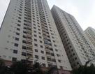 Thanh tra Chính phủ lên tiếng về sai phạm tại dự án nhà ở Đại Thanh