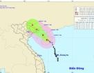 """Bão số 1 đã """"đổ bộ"""" vào đảo Hải Nam - Trung Quốc"""