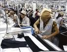 Hợp đồng lao động không được trái với quy định của pháp luật