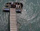 Đến Hải Phòng ghé làng chài cổ nhất Việt Nam