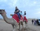 Bí quyết để có một chuyến du lịch Dubai thú vị