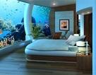 Lạ mắt với những nhà hàng, khách sạn dưới nước