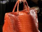 Những chiếc túi thanh lịch của Bottega Veneta