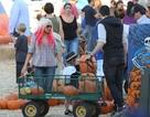 Christina Aguilera đưa con đi chơi Halloween