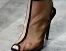 BST giày dép - Túi xách Giambattista Valli