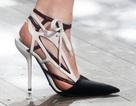 BST giày dép thanh lịch của Dior