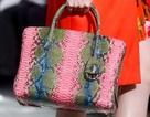 Túi xách sang trọng của Christian Dior