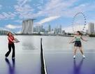 Singapore khởi động giải quần vợt WTA Championships