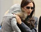 Victoria Beckham và con gái nổi bật tại sân bay