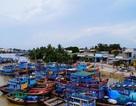 Đến La Gi tìm về vùng quê Việt Nam xưa