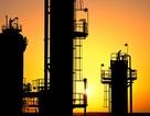 Dự án Nhà máy lọc dầu 27 tỷ USD tại Bình Định mới chỉ là ý tưởng