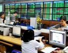 Cổ phiếu bảo hiểm, tiêu dùng kéo VN-Index tăng gần 5 điểm