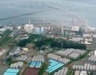 Hàn Quốc sẽ cấm nhập khẩu thủy sản từ Nhật Bản