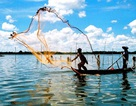 Ngành thủy sản tăng trưởng cao nhất trong Fast 500