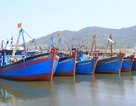 VinaPhone hỗ trợ ngư dân Gói cước biển đảo