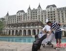 Bao trọn bể bơi khách sạn 5 sao tổ chức sinh nhật cho thú cưng