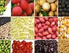 Hàng trăm dòng thuế suất nông sản sẽ về 0% vào năm 2018