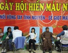 Hàng trăm cán bộ ngành y hăng hái hiến máu cứu người