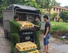 Tiêu hủy gần 1 tấn gà thải loại, nhập lậu từ Trung Quốc