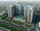 Căn hộ Lexington Residence, An Phú, Quận 2- Mua nhà với lãi suất 0%!
