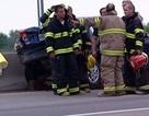 Dừng xe giúp vịt trên đường cao tốc, một phụ nữ lĩnh án tù