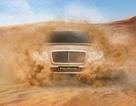 Mẫu SUV mới của Bentley sẽ mang tên Bentayga