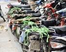 Hàng trăm ngàn ôtô phải thu hồi: Tẩu tán đi đâu hết?
