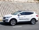 Hyundai Thành Công tổ chức lái thử xe SantaFe và Accent