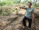Khắc phục hậu quả vụ san đường, ủi phẳng 13 ngôi mộ