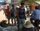 Khách du lịch homestay ở đảo Lý Sơn bị mất trộm