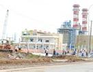 Cà Mau: Gần 600 lao động Trung Quốc xin cấp phép lao động