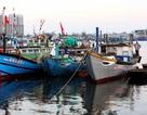 Các tỉnh, thành trong vùng nguy hiểm của bão cần cấm biển