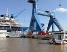 Đề xuất cho Tân Cảng Hiệp Phước đón tàu container