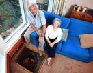 Phát hiện giếng cổ dưới gầm ghế sofa