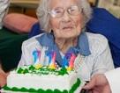 Người thọ nhất thế giới kỷ niệm sinh nhật lần thứ 116