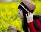 """Du học sinh Việt """"khoe sắc"""" cùng """"ngọn đồi cải vàng"""""""