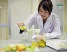 Kỳ 4: Kỹ sư chăn nuôi và ngành công nghệ thực phẩm