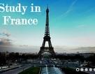 Diễn đàn du học Pháp 2013 lần thứ 8