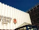 Học trường đỉnh tại thủ đô London với chi phí thấp