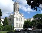 Mời gặp đại diện trường Auckland – TOP các trường tại New Zealand