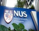 Giáo dục Đại học của Singapore thăng hoa trên bảng xếp hạng thế giới 2013