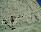 Phát hiện hàng ngàn dấu chân khủng long trên bức tường đá lớn