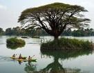 """Vẻ đẹp sông Mê Kông được ghi lại trong """"Dấu ấn tháng 11"""""""