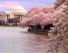 Top Ten Travel và chùm tour du lịch sau Tết
