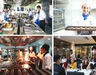 Thực tập hưởng lương và đảm bảo việc làm tại khách sạn 5 sao