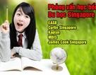 Hơn 100 suất học bổng hấp dẫn cho sinh viên du học Singapore kỳ tháng 7/2014