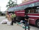 Hơn 130kg ba ba, lợn rừng trên xe khách bị CSGT bắt giữ
