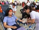 Quảng Bình: Hiến máu cứu người trên quê hương Đại tướng