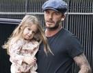 """David Beckham tất bật với """"công chúa nhỏ"""""""
